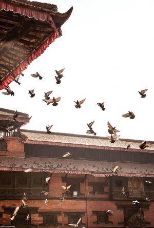 Menu Nepal Project (© Jonas Bjerre-Poulsen)