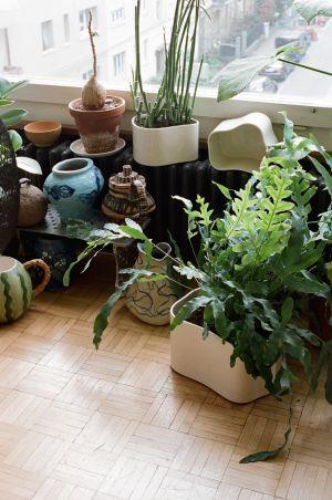 Pflanzentopf Riihitie Pot B (© Artek)
