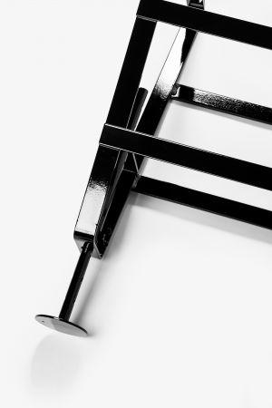 Lackaffe Tischbock (© Atelier Haußmann)