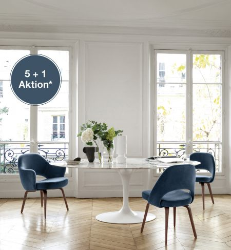 Knoll-Aktion 5+1